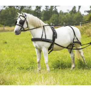 NORTON Synthetic breastplate harness