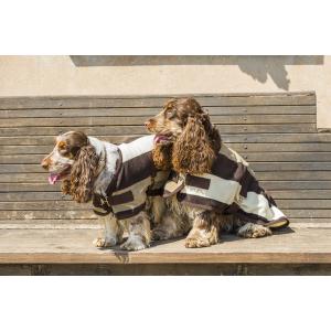 Couverture polaire EQUITHÈME Stripe pour chien