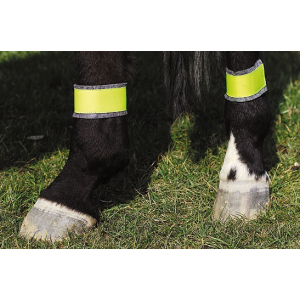 Hindlegs fluorescent bandages