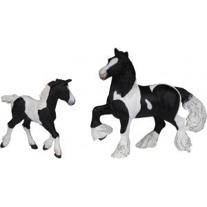 PAPO Black cob foal