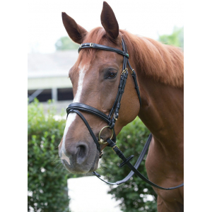 Norton Decoration bridle