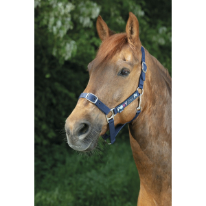 Equi-kids Pony Love Halter...
