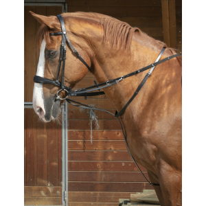 Norton Pro Thiedeman side reins
