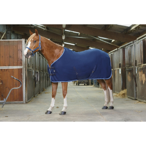 Riding World polar fleece sheet