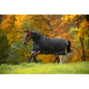 Horseware Amigo plus sheet