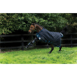 Couverture Horseware Amigo Bravo 12 Original Disc