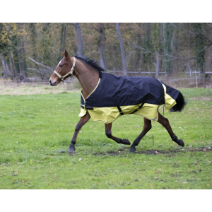 EQUITHÈME Tyrex 600D Turnout sheet Reflective