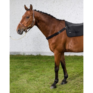 Back on Track Breast Girth for Horsebackwarmer