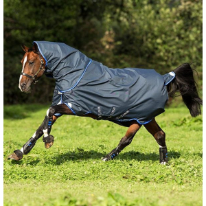Horseware Amigo Bravo 12 Plus Turnout sheet Disc