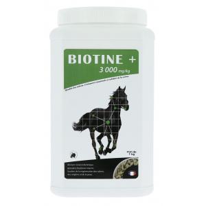 Biotine + du Maréchal