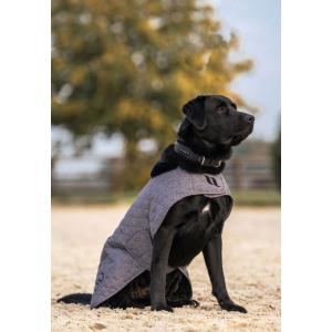 Hundemantel Back on track Haze Kollektion