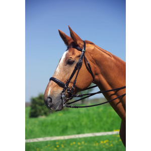 Éric Thomas Wide Weymouth bridle