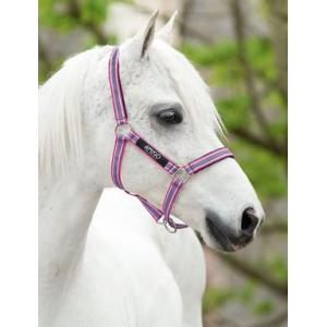 Horseware Amigo Headcollar PADD