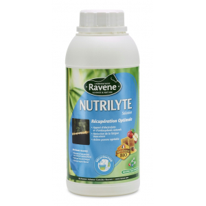 Ravene Nutrilyte flash solution Electrolyts