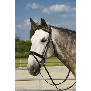 """AFTER RIDING """"Polo"""" bridle"""